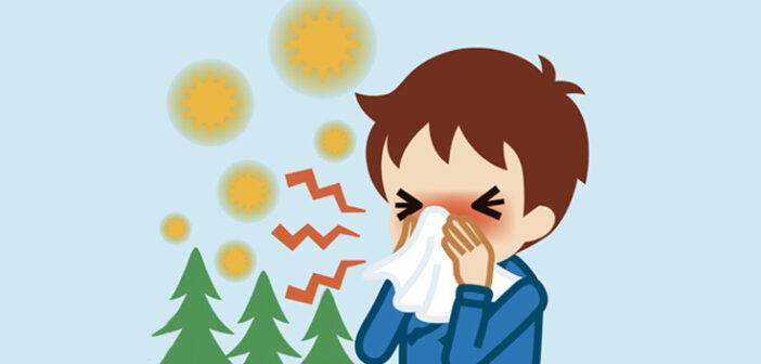 Pollensæsonen er begyndt – forbered dig allerede nu